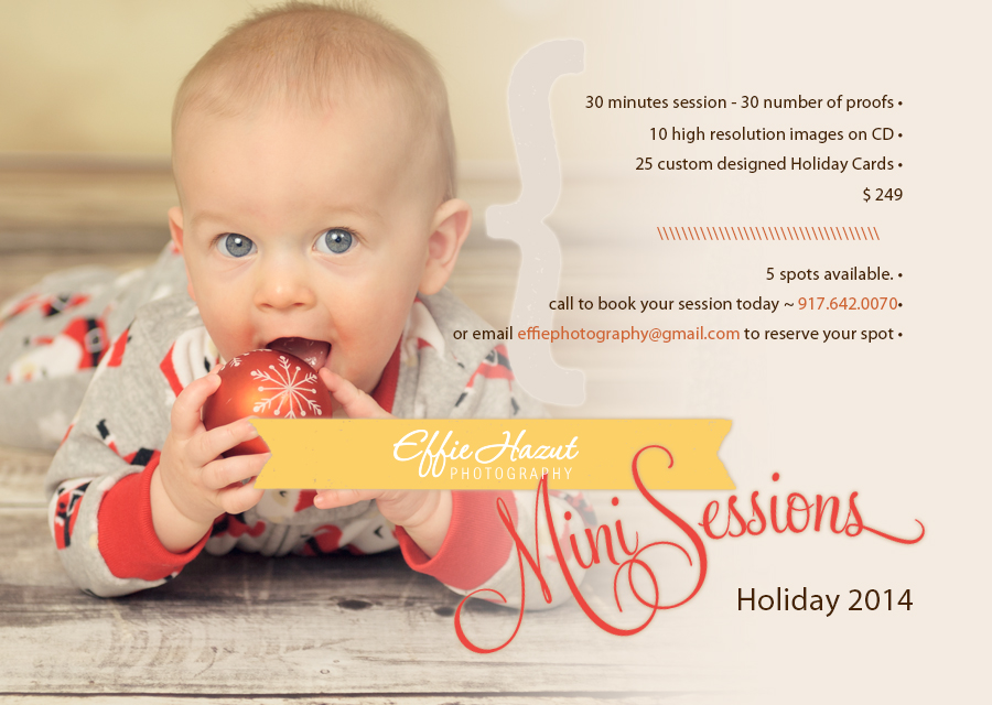 2014 Holiday Mini Sessionds